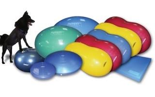 Тренажеры для дог-фитнеса
